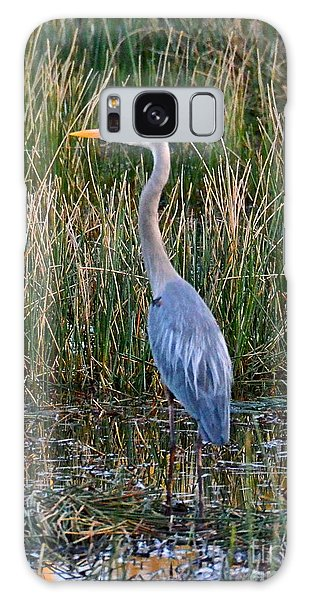 Heron At Sunset Galaxy Case by Carol  Bradley