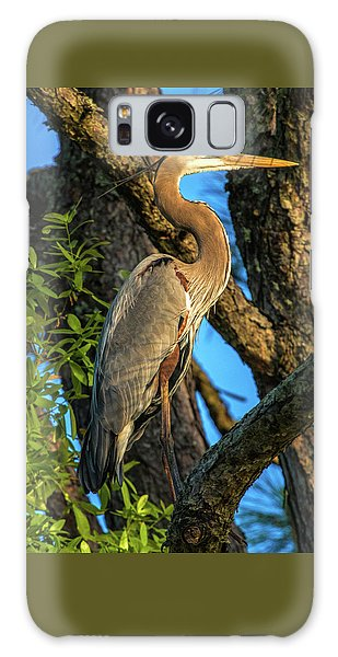 Heron In The Pine Tree Galaxy Case