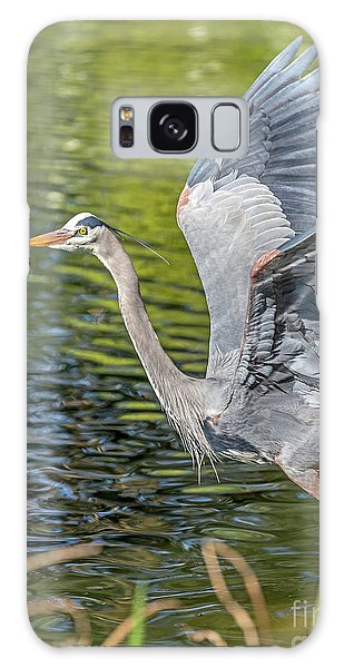 Galaxy Case featuring the photograph Heron Liftoff by Kate Brown
