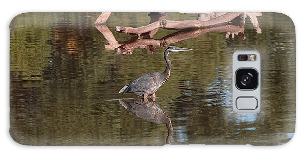 Heron Reflection Galaxy Case