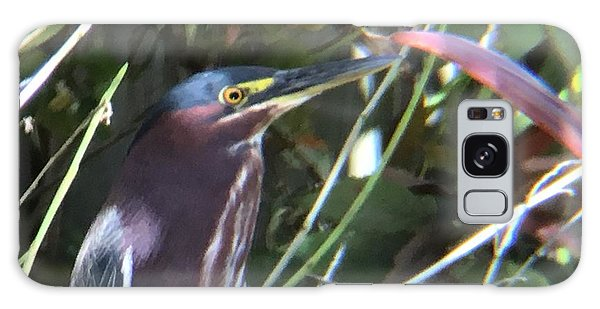 Heron With Yellow Eyes Galaxy Case by Val Oconnor