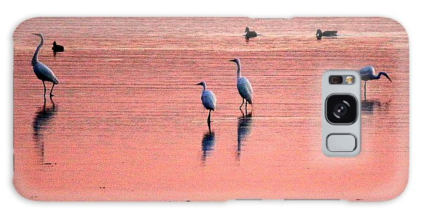 Herons At Sunrise Galaxy Case