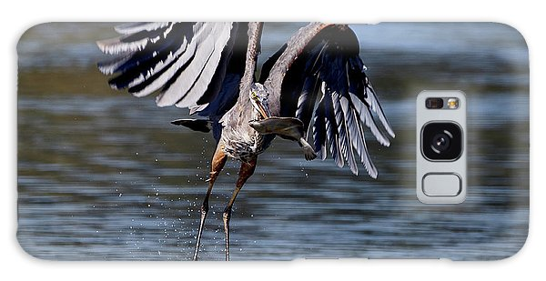 Great Blue Heron In Flight With Fish Galaxy Case