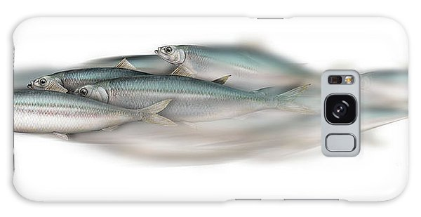 Herring School Of Fish - Clupea - Nautical Art - Seafood Art - Marine Art - Game Fish Galaxy Case