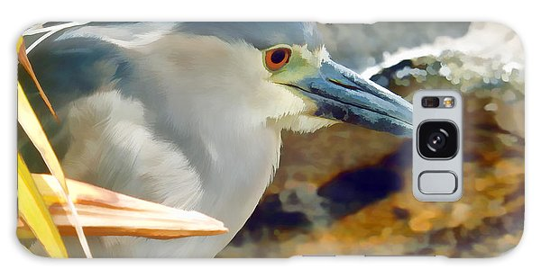 Heron Galaxy Case