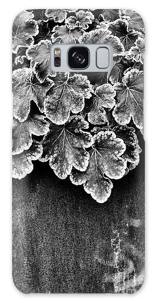 Metal Leaf Galaxy Case - Heucherella Solar Eclipse Monochrome by Tim Gainey