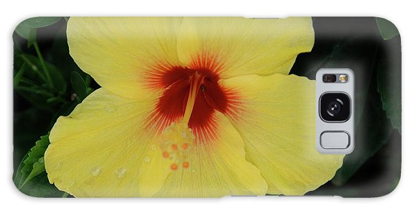 Sun Lover Hibiscus Galaxy Case