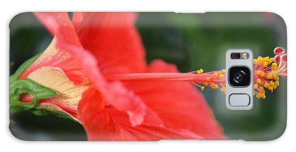 Hibiscus Closeup Galaxy Case