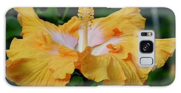 Hibiscus Golden Mist Galaxy Case