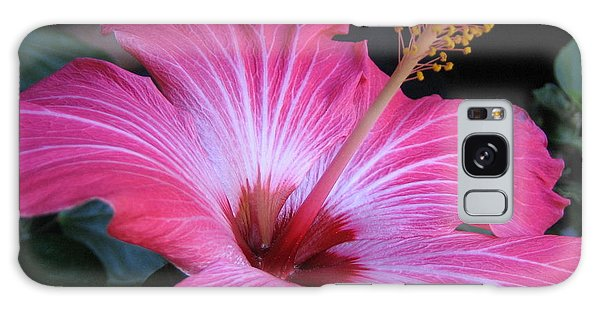 Hibiscus Photograph Galaxy Case by Barbara Yearty