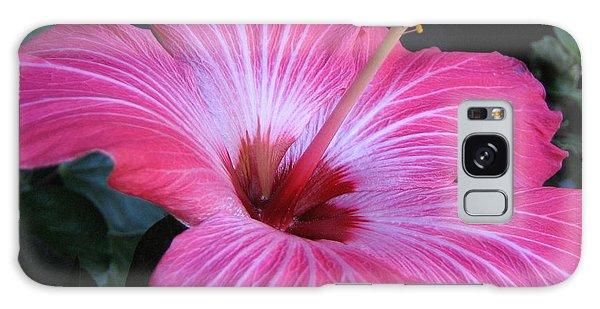 Hibiscus Photograph Galaxy Case