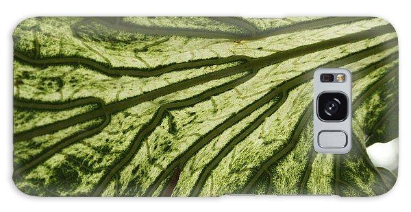 Hibiscus Tiliaceus Variegata 3 Galaxy Case