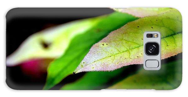 Hickory Leaf Galaxy Case
