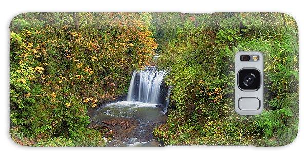 Hidden Falls In Autumn Galaxy Case