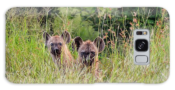 Hide-n-seek Hyenas Galaxy Case