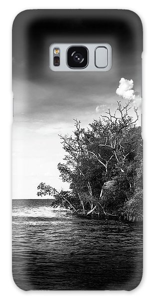 Mangrove Galaxy Case - High Tide by Marvin Spates