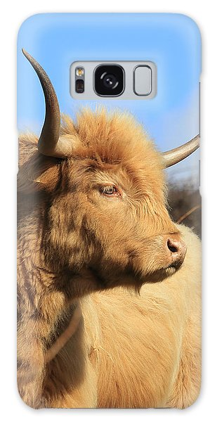 Highland Cattle Galaxy Case