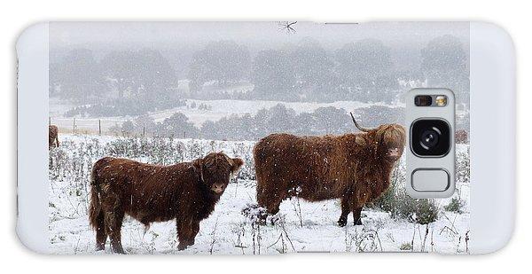 Highlanders In Snow Galaxy Case