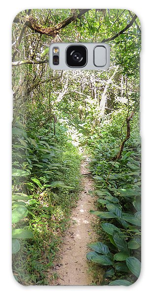Hiking Path In The Atlantic Forest Galaxy Case