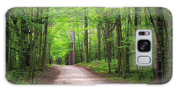 Galaxy Case featuring the photograph Hiking Trail In Green Forest by Elena Elisseeva