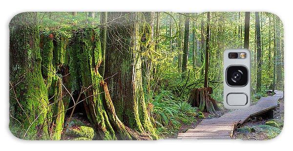 Hiking Trail Through Forest In Lynn Canyon Park Galaxy Case