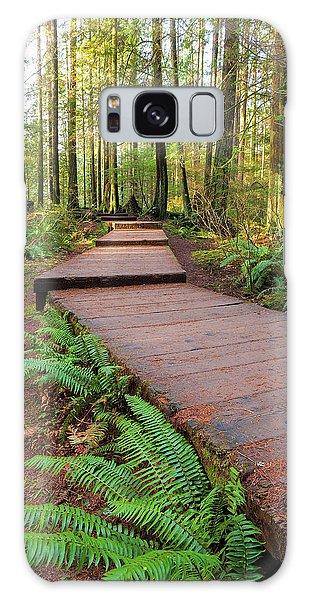 Hiking Trail Wood Walkway In Lynn Canyon Park Galaxy Case
