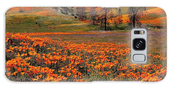 Hills Of Orange Near Antelope Valley Poppy Preserve In California Galaxy Case