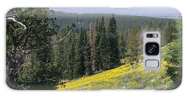 Hillside Wildflowers Galaxy Case