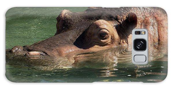 Hippopotamus In Water Galaxy Case