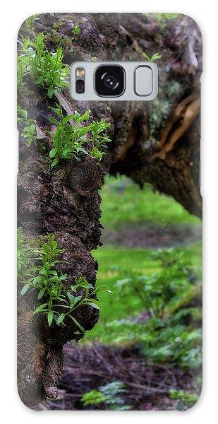 Hobbit Tree Galaxy Case