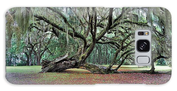 Hofwyl-broadfield Plantation2 Galaxy Case