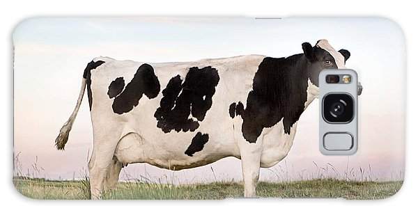 Holstein Dairy Cow Galaxy Case