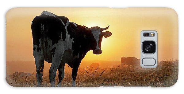 Holstein Friesian Cow Galaxy Case