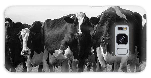 Curious Holsteins Galaxy Case