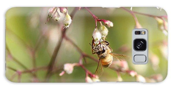 Honey Acrobat Galaxy Case