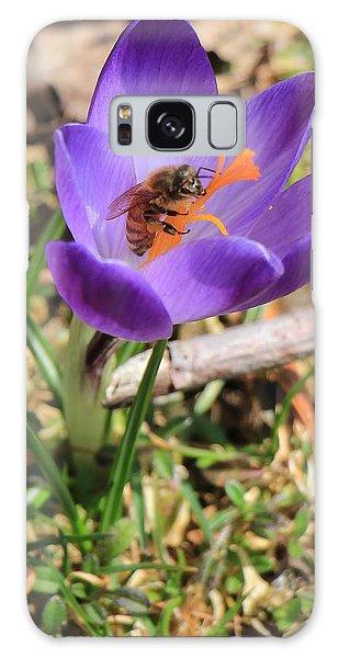 Honey Bee On Crocus  Galaxy Case