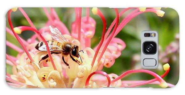 Honey Bee On Grevillea  Galaxy Case