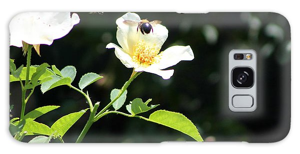 Honey Bees In Flight Over White Rose Galaxy Case