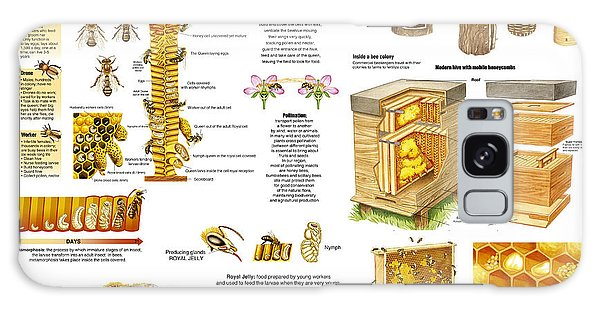 Honey Bees Infographic Galaxy Case by Gina Dsgn