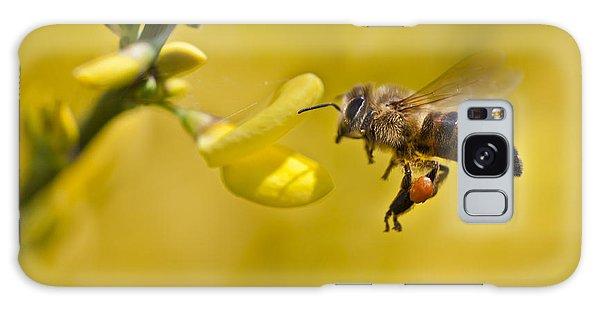 Honeybee Apis Mellifera Galaxy Case by Gabor Pozsgai