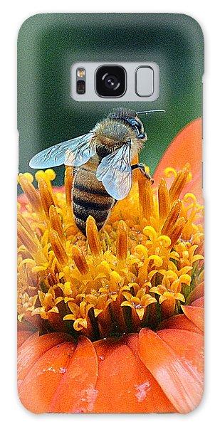 Honeybee On Orange Flower Galaxy Case