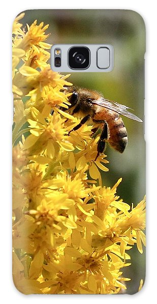 Honeybee On Showy Goldenrod Galaxy Case