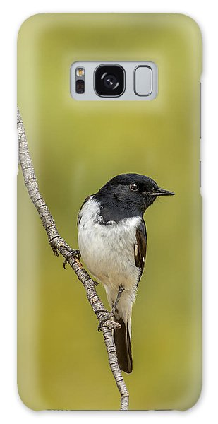 Hooded Robin Galaxy Case