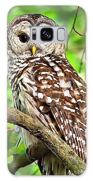 Galaxy Case featuring the photograph Hoot Owl by Christina Rollo