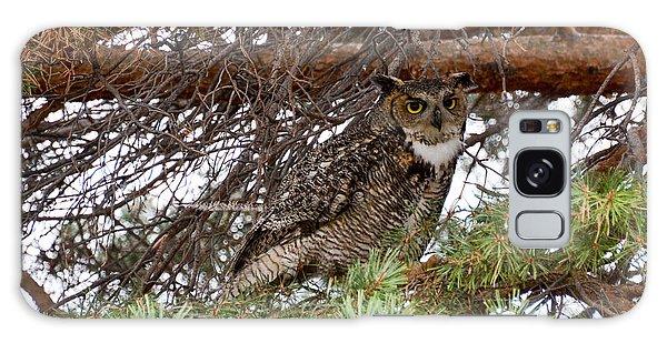 Hoot Owl Galaxy Case