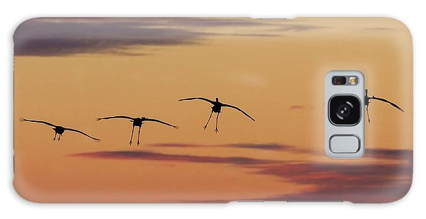 Horicon Marsh Cranes #4 Galaxy Case