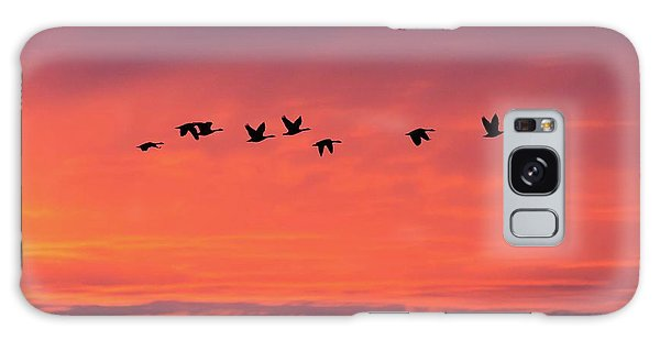 Horicon Marsh Geese Galaxy Case