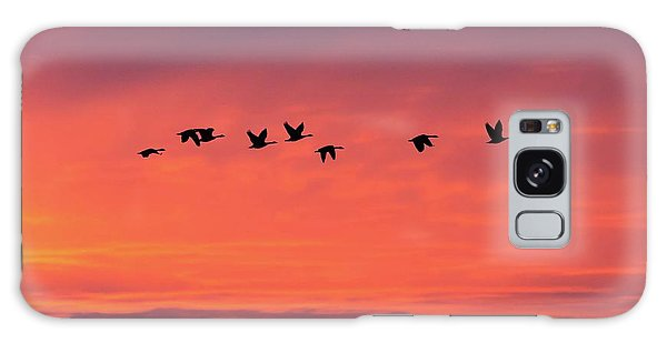 Horicon Marsh Geese Galaxy Case