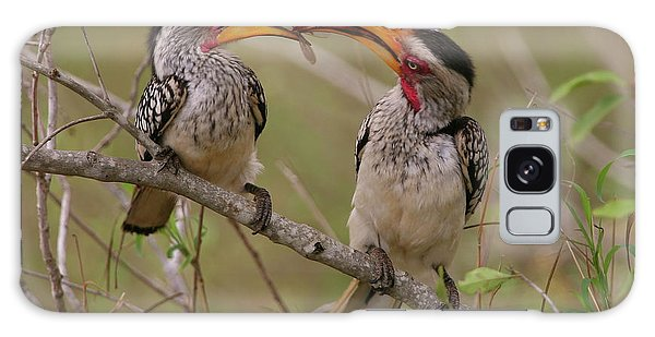 Hornbill Love Galaxy Case by Bruce J Robinson