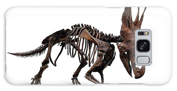 Horned Dinosaur Skeleton Galaxy Case